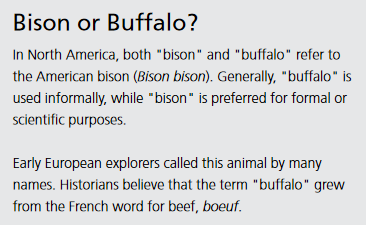 text asks bison or buffalo?
